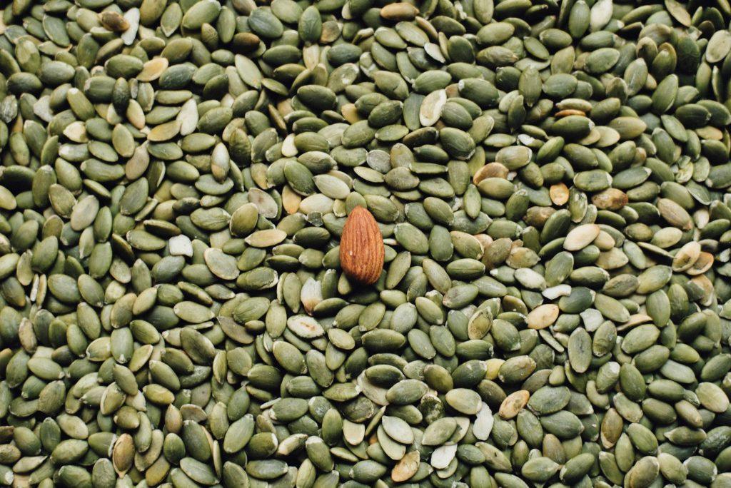 pumpkin seed oil pumpkin seeds