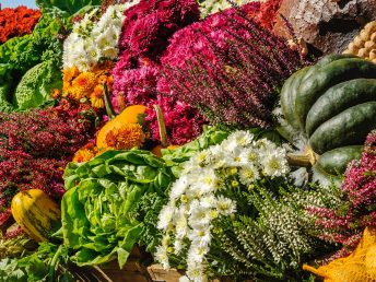 fall vegetables 1